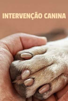 Intervenção Canina - 1ª Temporada Completa Download